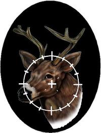 Buck Hunting Decal / Sticker 09