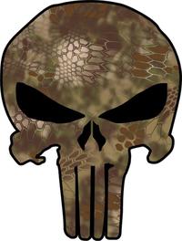 Camouflage Punisher Decal / Sticker 59
