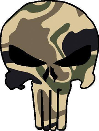 Camouflage Punisher Decal / Sticker 11