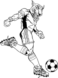 Soccer Cougars / Panthers Mascot Decal / Sticker 2A
