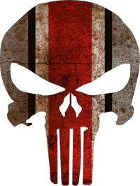 Ohio State Weathered Punisher Decal / Sticker 39