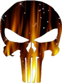 Flaming Punisher Decal / Sticker 02