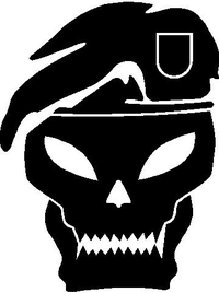 Black Ops Skull Decal / Sticker