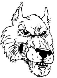 Huskies Mascot Decal / Sticker 5