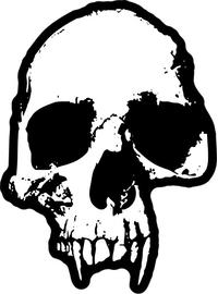 Eroded Skull Decal / Sticker 30