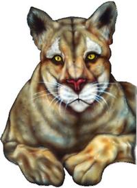 Cougar Decal / Sticker 01