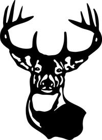 Buck Deer Decal / Sticker 13