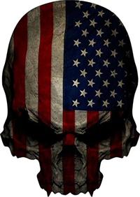American Flag Skull Decal / Sticker 01