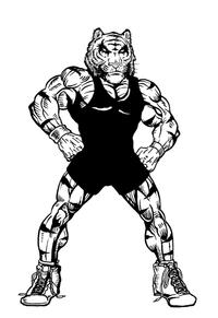Wrestling Tigers Mascot Decal / Sticker 3