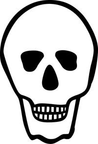 Skull Decal / Sticker 26