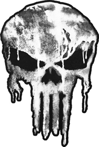 Weathered Punisher Decal / Sticker 120