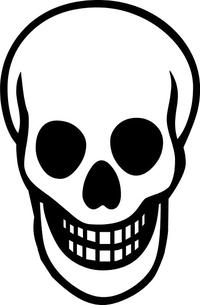 Skull Decal / Sticker 27