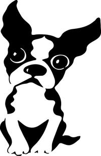 Boston Terrier Decal / Sticker 03