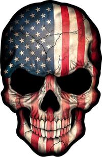 American Flag Skull Decal / Sticker 06