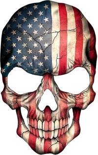 American Flag Skull Decal / Sticker 05