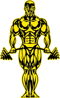 Gold's Gym Decal / Sticker 07
