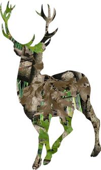 Buck Hunting Decal / Sticker 10