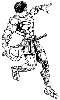 Basketball Paladins / Warriors Mascot Decal / Sticker 4 ^This white rectangle is NOT part of the decal^
