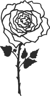 Rose Decal / Sticker 04