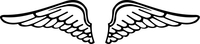 Wings Decal / Sticker 01