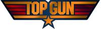 Top Gun Decal / Sticker 09