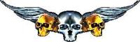 Gold Winged Skulls J4 Decal / Sticker