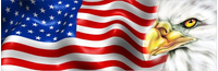 American Flag with Eagle Decal / Sticker 51