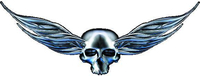 Winged Skull Decal / Sticker