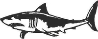 Shark Decal / Sticker 01