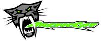 Arctic Cat Decal / Sticker 10