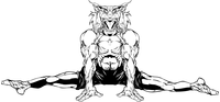 Gymnastics Bobcat Mascot Decal / Sticker