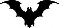 CUSTOM BAT DECALS and BAT STICKERS