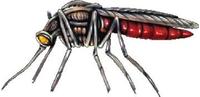 Mosquito Decal / Sticker 01