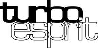 Lotus Turbo Esprit Decal / Sticker 09