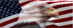 American Flag Bald Eagle Decal / Sticker 35