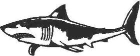 Shark Decal / Sticker 01