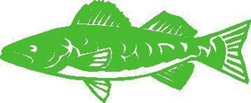 Fish Decal / Sticker 01