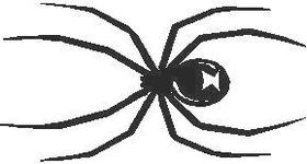Black Widow Spider Decal / Sticker 03