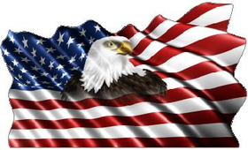 American Flag Eagle Waving Decal / Sticker 13