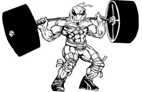 Weight Training Hornet, Yellow Jacket, Bee Mascot Decal / Sticker 7