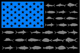 American Flag Fish Decal / Sticker 112 Black, Sky Blue and Gray