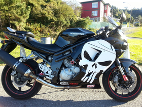 Motorcycle Punisher Decal