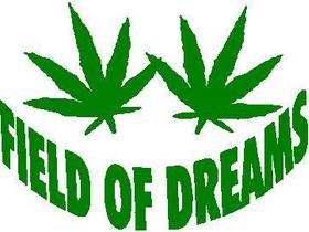 Field of Dreams Decal / Sticker