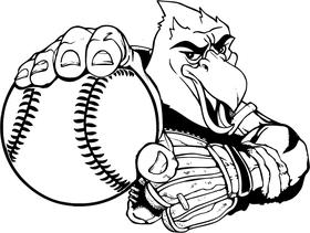 Baseball Hawks / Falcons Mascot Decal / Sticker