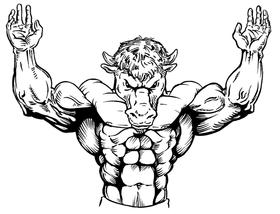 Weightlifting Buffalo Mascot Decal / Sticker wt1