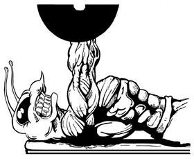 Weight Training Hornet, Yellow Jacket, Bee Mascot Decal / Sticker 6