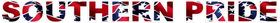 Southern Pride Rebel Flag Decal / Sticker 02