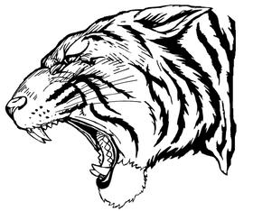 Tigers Mascot Decal / Sticker 3