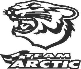 Team Arctic Cat decal /sticker