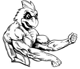 Weightlifting Cardinals Mascot Decal / Sticker 4